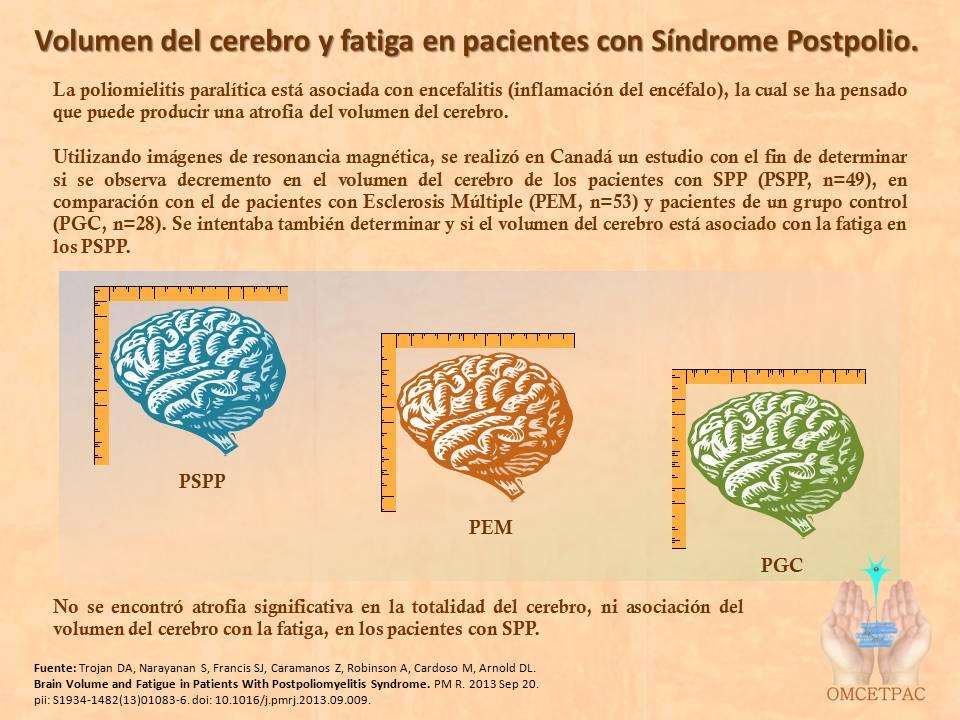 http://www.postpoliomexico.org/TamanoCerebroSPP.jpg